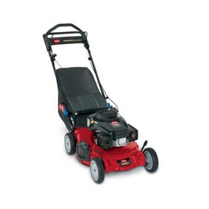 """Toro 21"""" Personal Pace 3-in-1 Lawn Mower 20381"""