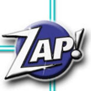 Zap Professional Wood Restorer
