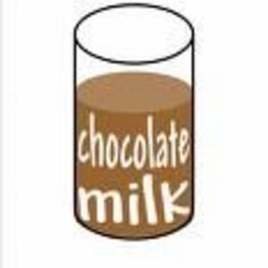 Food Lion Chocolate Milk