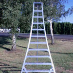 Tallman Ladders Tripod Orchard Ladder