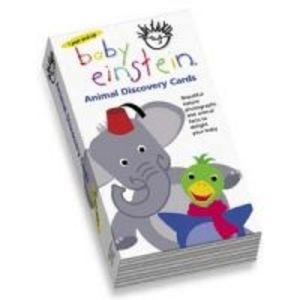 Baby Einstein Flashcards