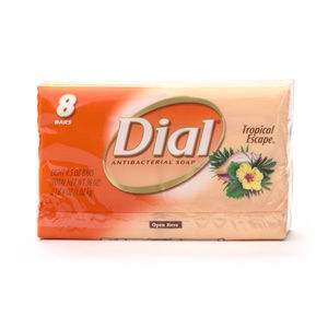 Dial All Day Freshness Tropical Escape Antibacterial Deodorant Bar Soap