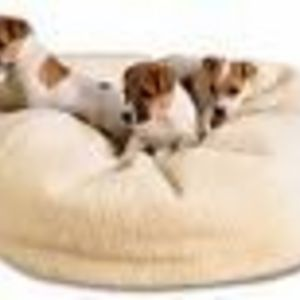 L.L.Bean Dog Bed