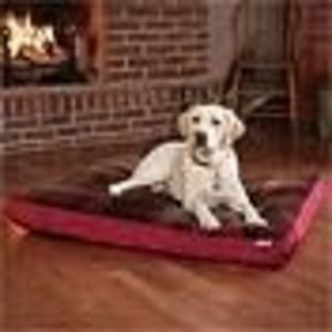 Costco Dog Bed Reviews Viewpoints Com