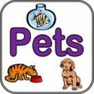 Universal Pet Products Proderma V