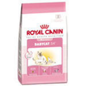 Royal Canin Babycat Dry Food