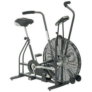 Schwinn Airdyne Exercise Bike 3550012 Reviews Viewpoints Com