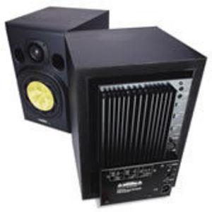 Fostex Speaker System