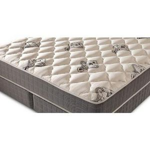 Denver Mattress Doctor's Choice Mattress