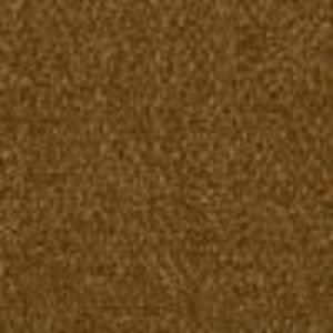 Any Brand Carpeting