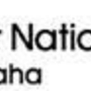 First National Bank of Omaha - Visa Card