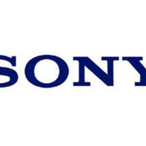 Sony - Handycam Camcorder
