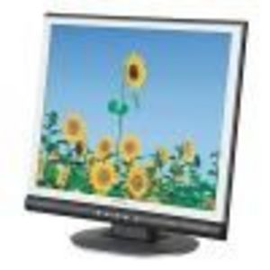 Envision 17-Inch LCD Monitor