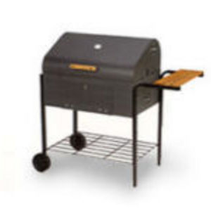 Bradley Technologies Charcoal Judge Grill
