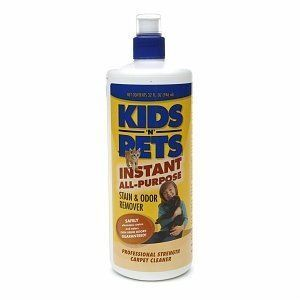 Paramount Kids 'N' Pets Instant All Purpose Stain and Odor Remover