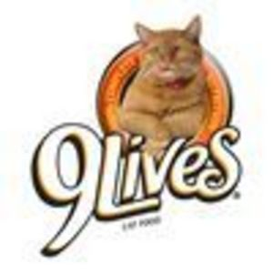 9 Lives Urinary Tract Formula Dry Cat Food