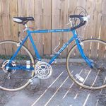 Sears Free Spirit 12 Speed Road Bike