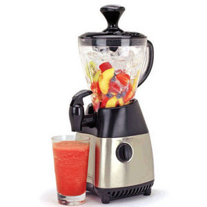 Back to Basics Signature Blender Smoothie Maker