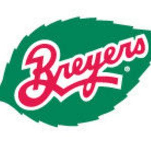Breyers - Sugar Free Ice Cream