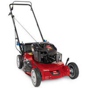 Briggs & Stratton Brute 3-N-1 Self-Propelled Mower