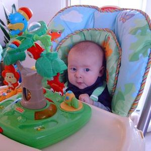 Fisher Price Rain Forest High Chair