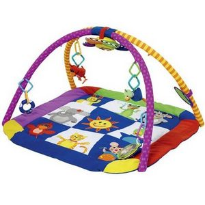 Baby Einstein Discover & Play Gym