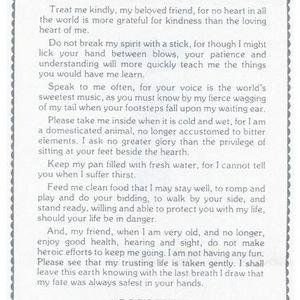 A Dog's Plea Poem-Story