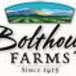 Bolthouse Farms Chunky Blue Cheese Olive Oil Vinaigrette