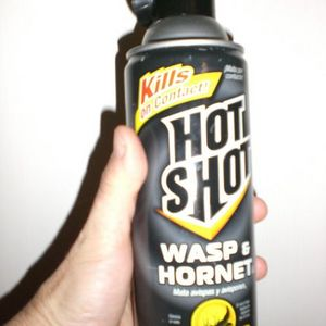 Hot Shot Wasp & Hornet Killer