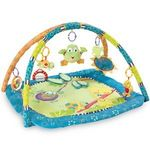 Bright Starts Hop Along Friends Play Gym
