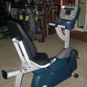 Essential Recumbent Bike