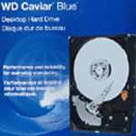 Western Digital Caviar Blue WD3200 320GB PATA hard drive