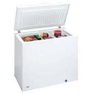 Frigidaire 8.8 cu. ft. Chest Freezer FFC0923DW
