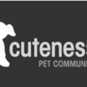 Cuteness.com