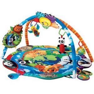 Baby Einstein Discover The World Play Gym