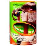 Garnier Fructis Style Sleek & Shine Blow Dry Perfector