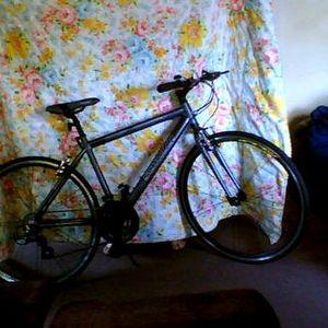 """Schwinn Schwinn 28"""" mens Tourist bike"""