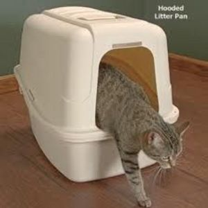 Drs. Foster and Smith Jumbo Hi-Back Hooded Litter Pan