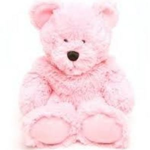 Beddy Bear Hot/Cold Pack