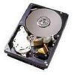 IBM (40K1029) 73 GB SCSI Ultra320 Hard Drive