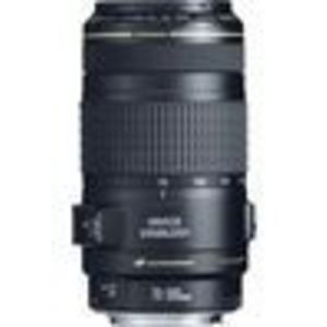 Canon EF 70-300mm f/4-5.6 IS USM Lens