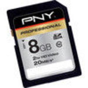 PNY Professional 16 GB Class 10 Hi-Speed SDHC 20MB/s 133x Flash Memory Card P-SDH16G10-XLR133-EF