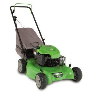 Lawn Boy 10640 20-Inch Gas-Powered Push Lawn Mower
