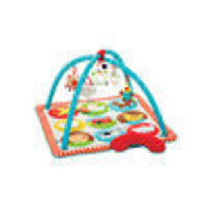 Skip Hop Farmyard Activity Gym