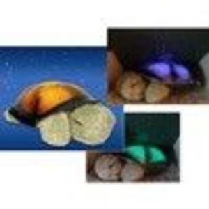 Cloud B Twilight Turtle Constellation Night Light