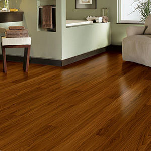 Charming Armstrong Luxe Plank Vinyl Floor