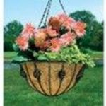 Woodstream HBANT14-B 14 Inch Antoinette Hanging Basket (Woodstream)