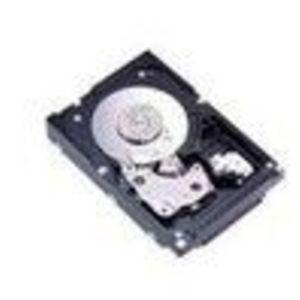 IBM (42D0410) 300 GB Fibre Channel Hard Drive