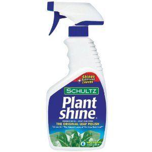 Schultz Plant Shine