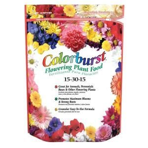 Colorburst Flowering Plant Food